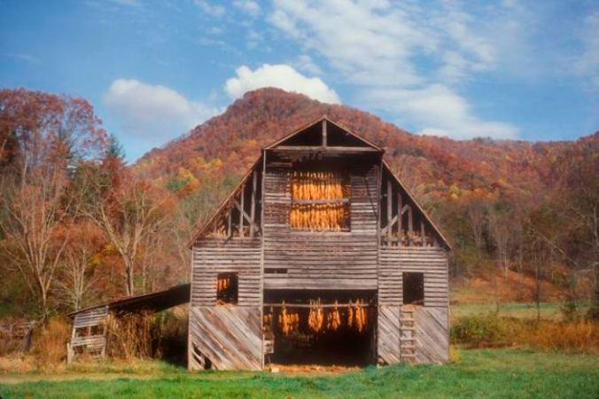 Meadows-Tobacco-barn-700-by-Tim-Barnwell