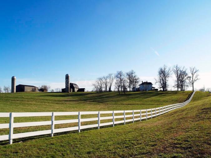 farm-white-board-fence-26312246